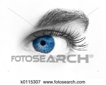 Foto - close-up, olho.  fotosearch - busca  de fotos, imagens  e clipart