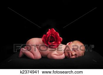 Stock Photography - sleeping newborn baby. fotosearch - search stock photos, pictures, wall murals, images, and photo clipart