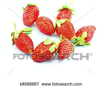 Picture - beautiful,  berry,<br /><br /><br /><br /><br /><br /><br /><br />  closeup,  delicious,<br /><br /><br /><br /><br /><br /><br /><br />  food,  fresh,<br /><br /><br /><br /><br /><br /><br /><br />  freshness. fotosearch<br /><br /><br /><br /><br /><br /><br /><br /> - search stock<br /><br /><br /><br /><br /><br /><br /><br /> photos, pictures,<br /><br /><br /><br /><br /><br /><br /><br /> wall murals, images,<br /><br /><br /><br /><br /><br /><br /><br /> and photo clipart